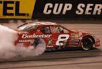 Dale Earnhardt Jr Richmond Raced Version
